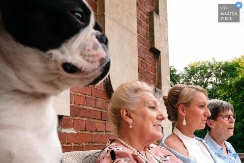 Fotos de la boda de Flandes en el castillo de propiedad privada - Mujeres 4 seguidas