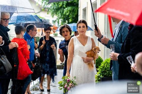 Baden-Württemberg Hochzeitsfotograf in Solothurn: Nach Zeremonie, Regen, Brautausdruck, gähnendem Hund scheint alles traurig
