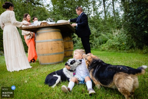 Wedding photography from Stryker, Montana - The ring bearer gets attacked by licking dogs