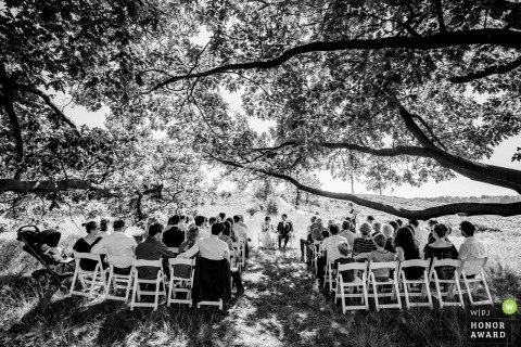 Netherland - de Hei	Outdoor Wedding Ceremony Photo | Guests watching from under the shade of the big trees.