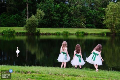 Buckinster Park - Grantham, Reportage de mariage britannique - Photographie de trois jeunes demoiselles d'honneur prenant le temps de la réception du soir pour regarder le cygne sur le lac.