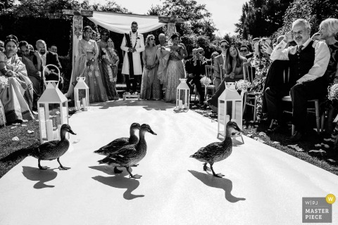 Northbrook Park, Surrey, United Kingdom — Wedding ceremony photography of Ducks Crossing
