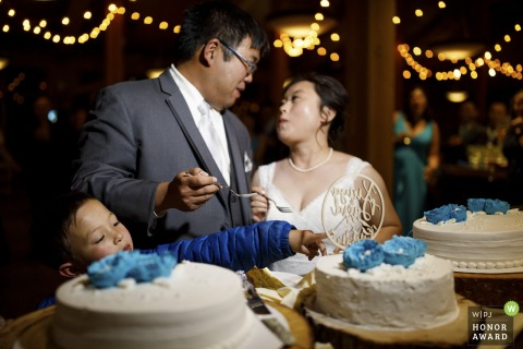 Arapahoe Basin Ski Resort wedding venue picture from cake cutting   A young child reaches in for a taste as the bride and groom enjoy their wedding cake.