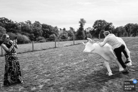 La vallée de la Roche - Tiffauges trouwfoto's buiten bij de receptie - Een man valt na een poging in de koe te klimmen