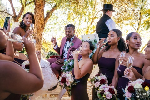 Temecula, CA wedding photographer ...  Couple cheers with the wedding party