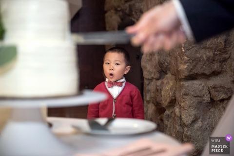 Fotos de recepção de casamento em Berkeley, CA. O menino reage ao corte do bolo.