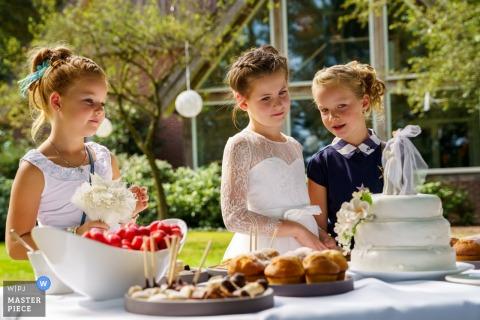 Image de mariage aux Pays-Bas de De Holtweijde - Petites filles se pâmant autour du gâteau de mariage