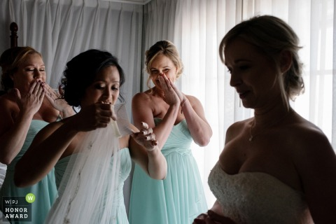 Julie Ambos, of Florida, is a wedding photographer for -