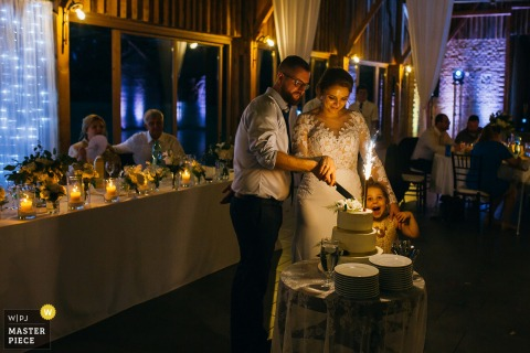 Slovakia, Lucenec wedding photos from reception venue | Lovely daughter of Bride and Groom during cutting the cake