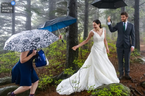 Black Balsam Knob, NC Wedding photo of the bride reaching for an umbrella on this rainy day wedding