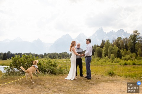 Grand Teton National Park Wedding Image | Dog celebrating wedding vows
