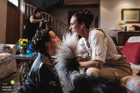 Photographie de mariage de Bretagne À la maison de la préparation de la mariée avec le chien, ayant besoin d'aider autant qu'il le peut