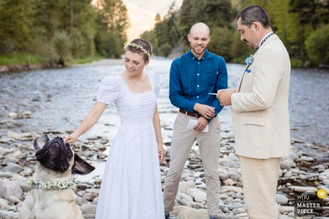 Mountain wedding photography from a small event at Rock Creek, Montana as the bride pets dog during vows