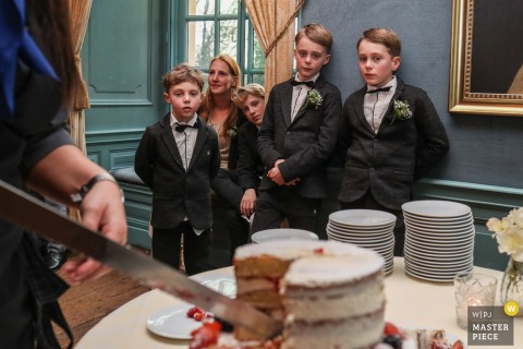 Reception wedding photo from castle Wijenburg, Echteld showing four brothers yearning for some cake
