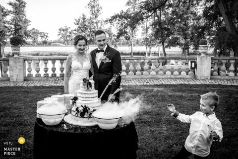 來自波蘭古托城堡的婚禮蛋糕婚禮攝影,新娘和新郎看著站在他們面前的小男孩