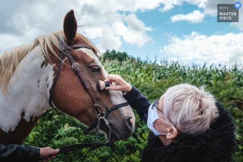 Morbihan Bretagne bruiloft afbeelding van de make-up voor de bruid ... en een paard