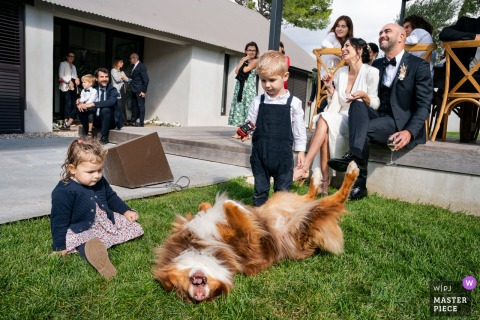Montpellier, France wedding reception image of kids, dog in laughter, and the couple during a speech