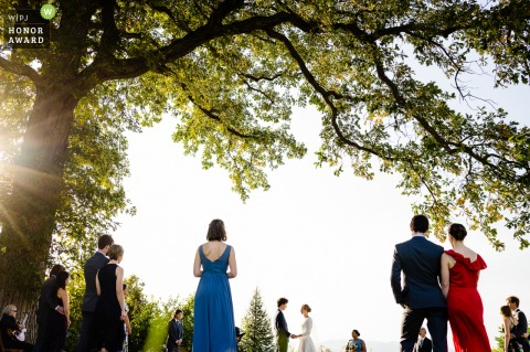 Vermont outdoor wedding photography in the sunshine at Shelburne Farms during A socially distanced ceremony under an oak tree.
