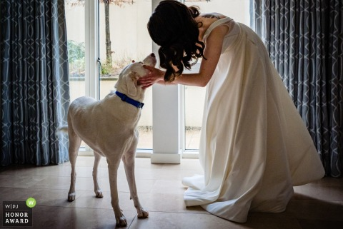 Une photo de mariage à Dublin en Irlande de la mariée et de son chien partageant un moment avant son départ pour la cérémonie