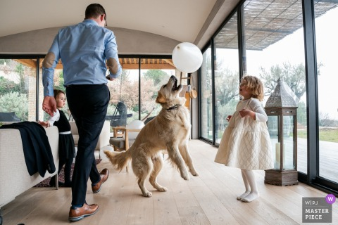 Vinsobres, France marriage preparation time award-winning picture capturing a girl and dog playing with a balloon while everyone is getting ready. The world's best wedding image competitions are held by the WPJA