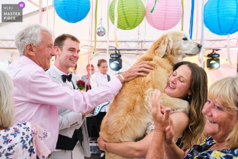 West Peckham, Kent marriage reception party award-winning photo that has recorded The married couple's pet dog joining them on the dance floor at the end of their first dance