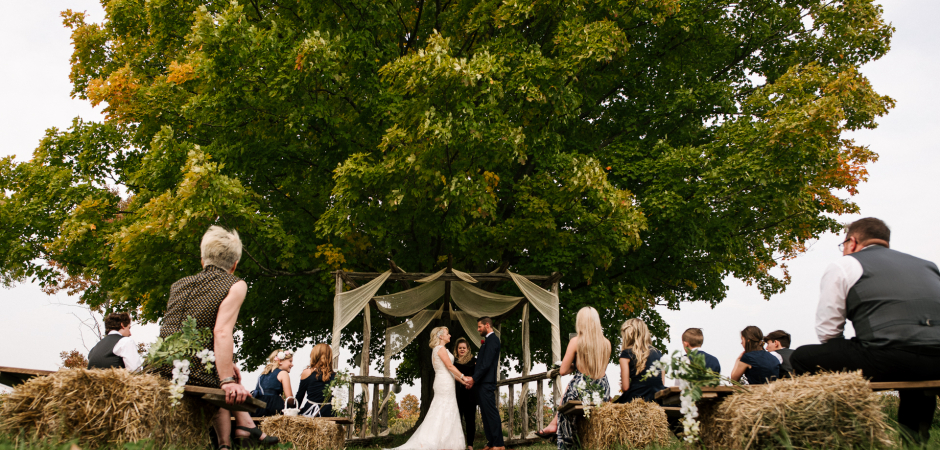 Wedding image from an outdoor ceremony under the tree at Hidden Meadows of Tamworth, Ontario, Canada