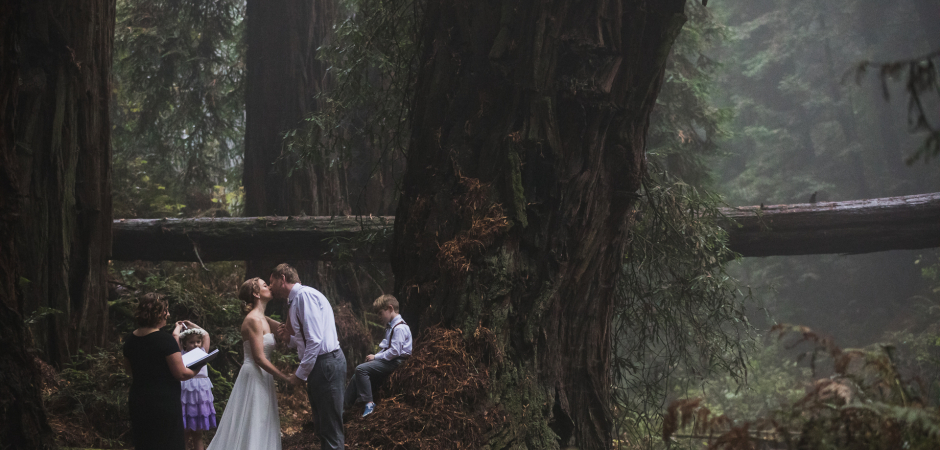 Redwood Forest Elopement image from a Stinson Beach in Marin County, CA wedding - Photo by Drew Bird