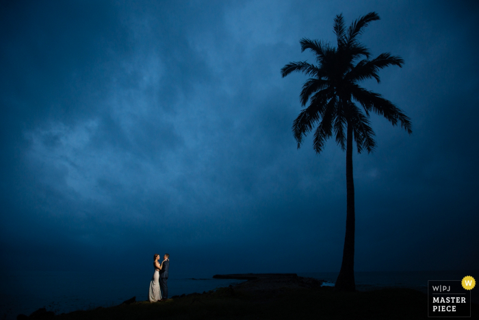 Montana wedding photographer captured this distance shot of a bride and groom kissing under a cloudy sky while standing next to a palm tree