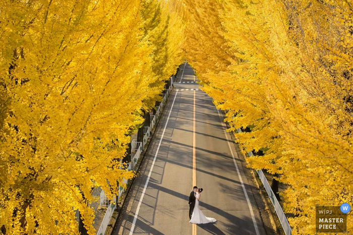 Taipei wedding photographer created this image of a bride and groom standing in the middle of an empty road surrounded by trees with yellow leaves