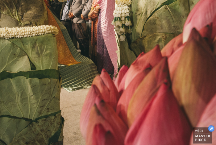 Bangkok wedding photographer created this artistic image of large flower buds and green leaves