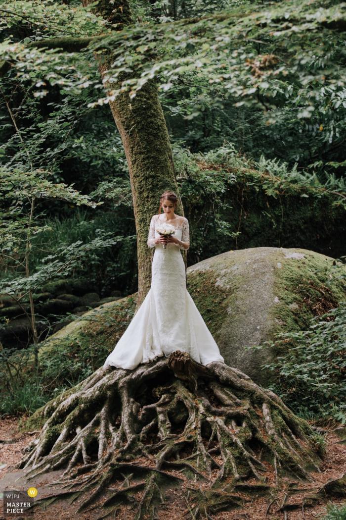 Porträt der Braut, die gegen einen Baum mit ausbreitenden Wurzeln unter ihr von einem Bretagne-Hochzeitsfotografen steht.