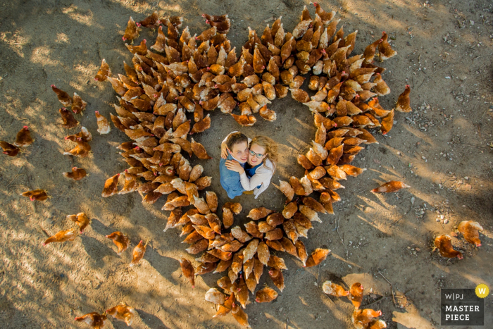 Photo taken above of the bride and groom standing among chickens arranged in the shape of a heart by a Netherlands wedding photographer.