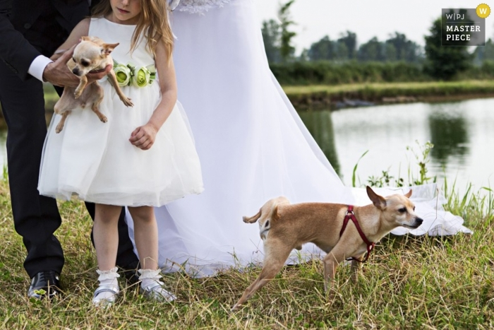 Italy Documentary Wedding Photographer | Image contains: outdoors, dogs, lake, bride, groom, color, flowergirl, grass