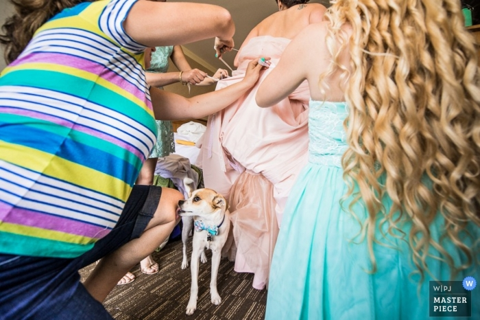 Atlantic City bride getting ready with help from bridesmaids and a small dog