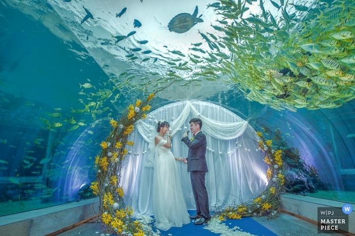 картинки свадеб рыбы днем рожденья, кум