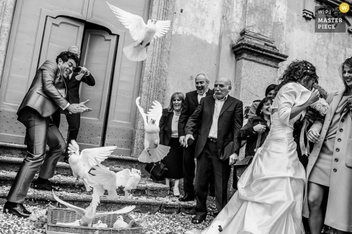 Lecco wedding photographer captured this humorous image of the bride and groom ducking from doves as they swoop in after the ceremony