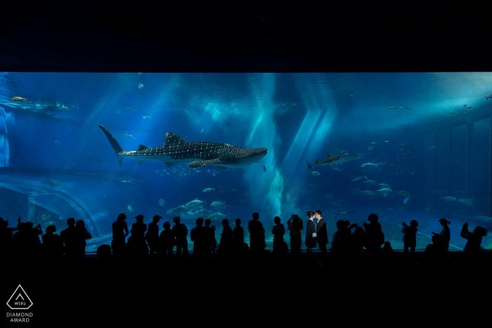 Hangzhou City-het portret van de huwelijksovereenkomst van een paar bij aquarium met haaien | Zhejiang pre-bruiloft fotograaf sessie