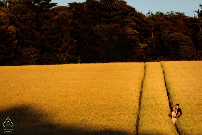 Verpflichtungs-Trieb mit Paaren auf den Gebieten bei Sonnenuntergang in Patrixbourne, Kent, UK