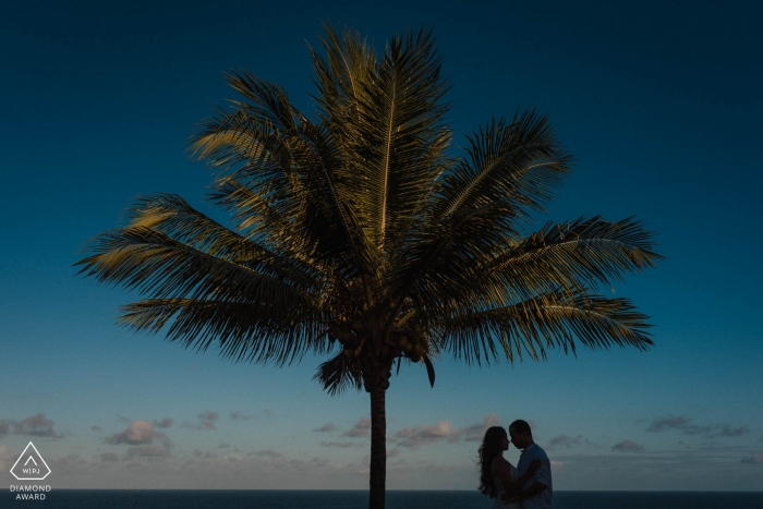 Itacaré - Bahia/BA  Engagement Photography session with palm tree and blue sky