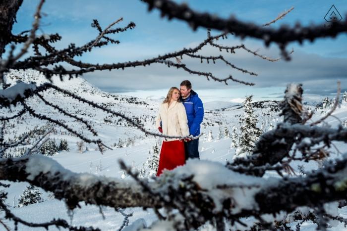 winter wonderland - Alberta Engagement Foto's in de sneeuw met bomen
