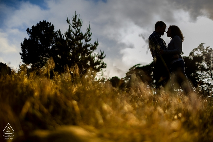 San Francisco engagement photography | face to face couple is silhouetted in the afternoon light