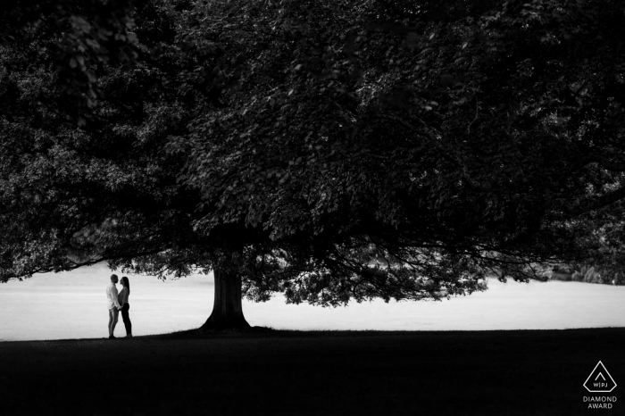 Himley Park, Birmingham Tree Silhouette engagement portrait session with a couple in black-and-white