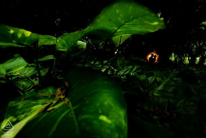 Photos de fiançailles dans la jungle à Kapalua, Maui, Hawaii. Couple est silhouetté contre un arbre avec le feuillage au premier plan