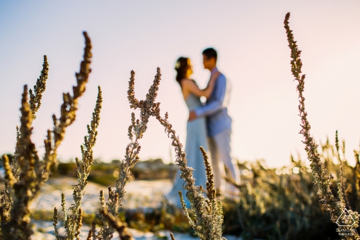 In this San Francisco engagement portrait shoot, the photographer focuses on a few branches of beach side plants while the couple embraces out of focus in the distance