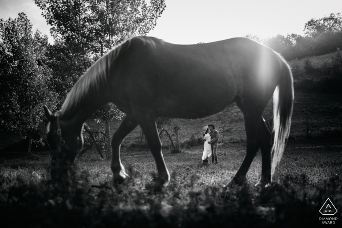 In Alvito, France, a couple can be seen standing in a field in the distance beyond a horse that stands in the foreground in this engagement photo captured by a Lazio photographer.