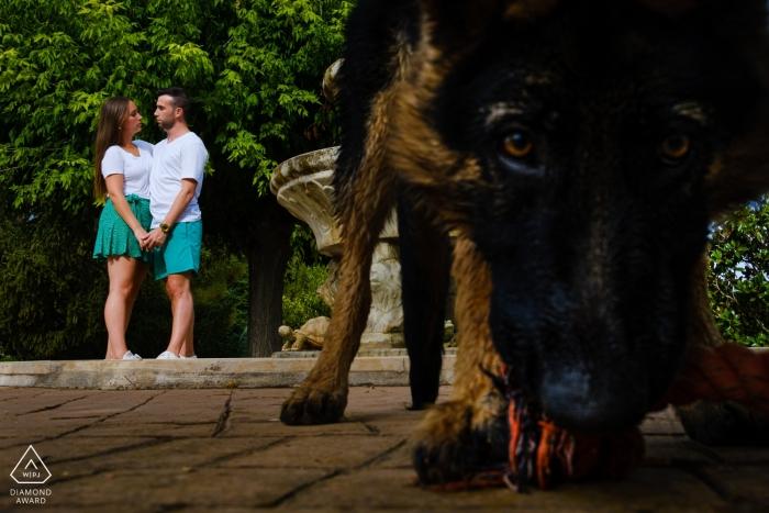 Alicante Verlobungsfotografie eines Paares mit einem Hund im Vordergrund, der mit einem Spielzeug spielt.