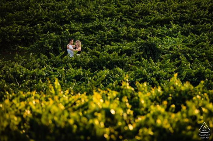 Dennis Vineyards Engagement Portrait Session pour un jeune couple amoureux.