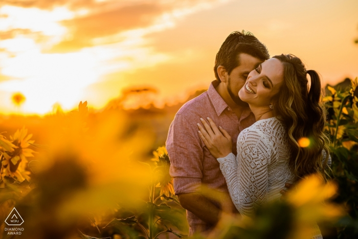 Holambra engagement portrait of a couple in the flower fields