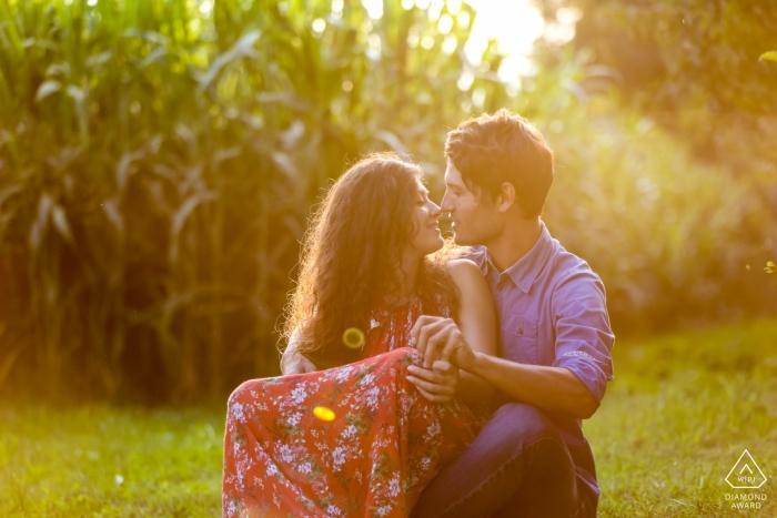 Treviso PreWedding Portrait d'un couple près des champs de maïs.