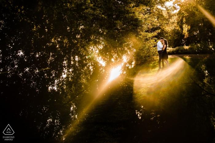Verlobungsfotos aus Davis, CA - Bild enthält: warm, Sonnenlicht, Bäume, Paar, verlobt